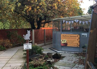 mayflower sanctuary, charity