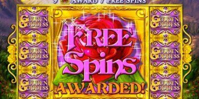 เทคนิคสล็อต : ความสำคัญของ Free Spins