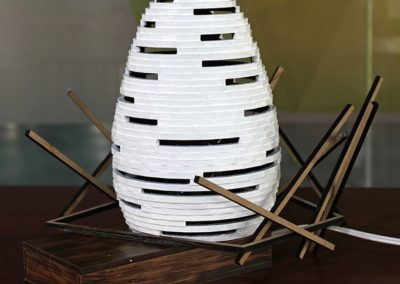 Egg Shaped Lamp Without Light