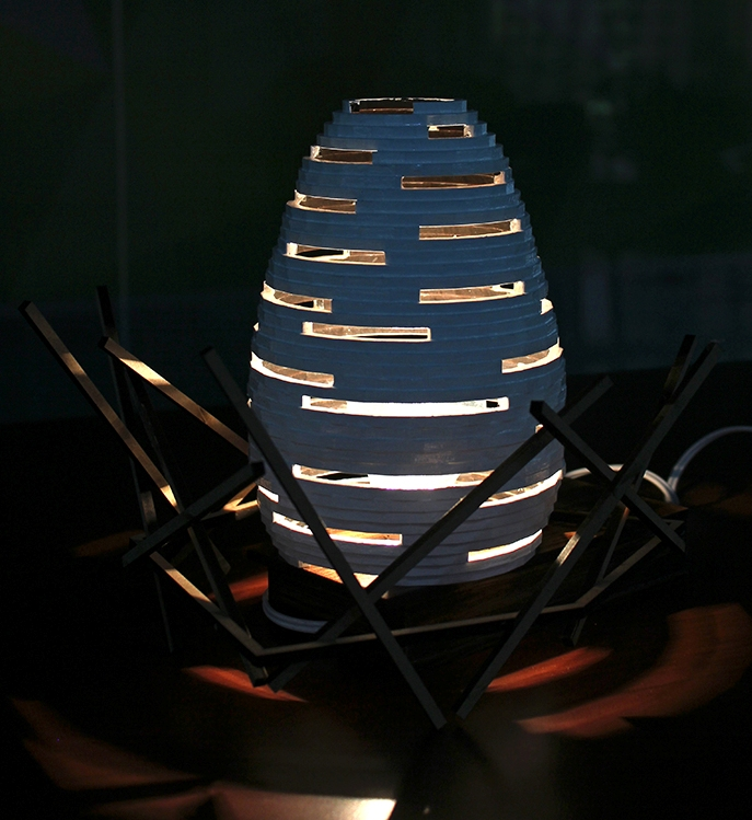 Egg Shaped Lamp With Light