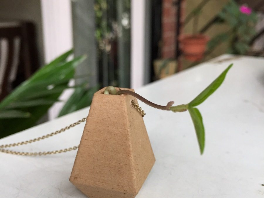3D printed wood pendent with plant