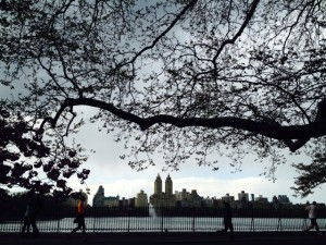 US blog New York