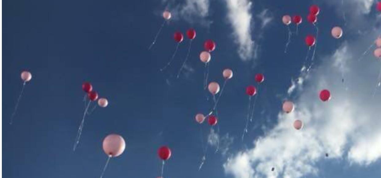 Barbecue Balloons