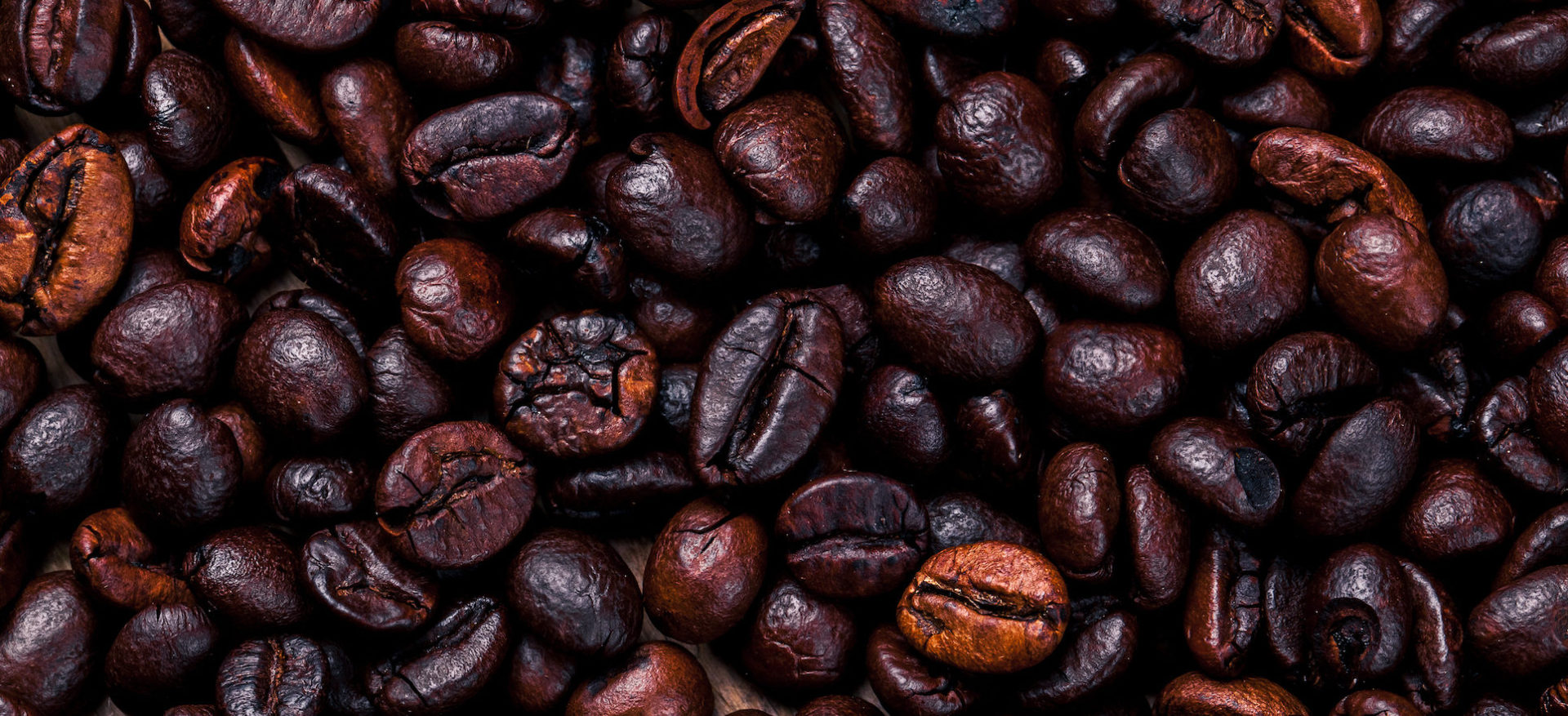 Trusted suppliers – Workshop Coffee