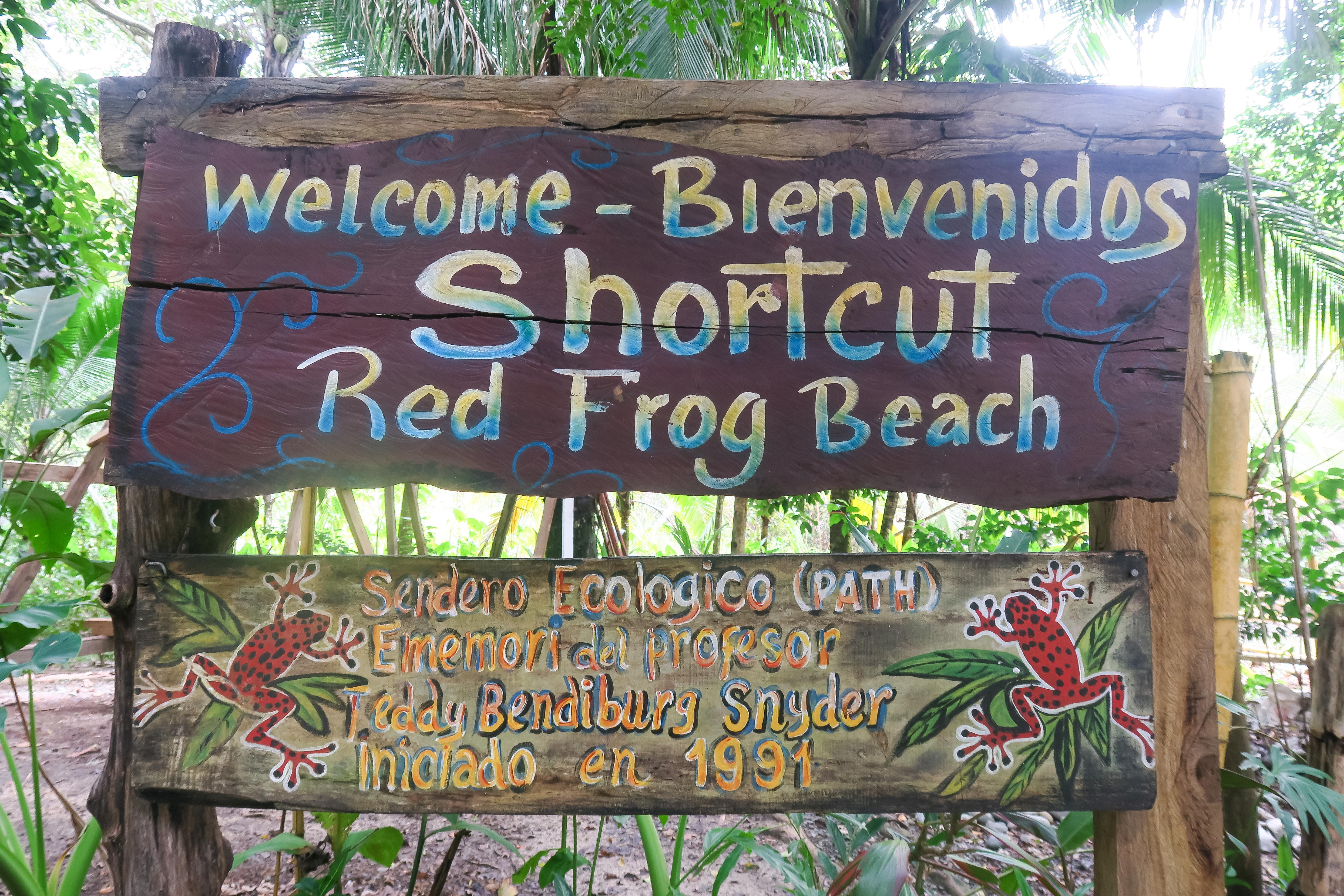 Red Frog Beach, Panama. Travel Diary by Rosie Andre (bocas, panama, costa rica, bastimentos, beach, plage, destination, wildlife, nature, photo, photography, photographs, discover, learn, explore, wanderlust, bucketlist, central america, latin, what to see, do, resorts, islands, rainforests)