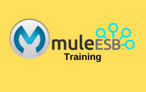 MuleESB Online Training