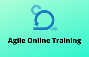 Agile Online Training