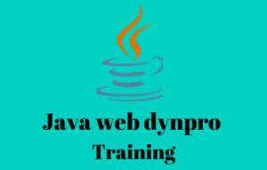 Java web dynpro online training