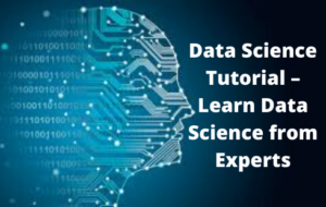 Data Science Tutorial – Learn Data Science from Experts (1)