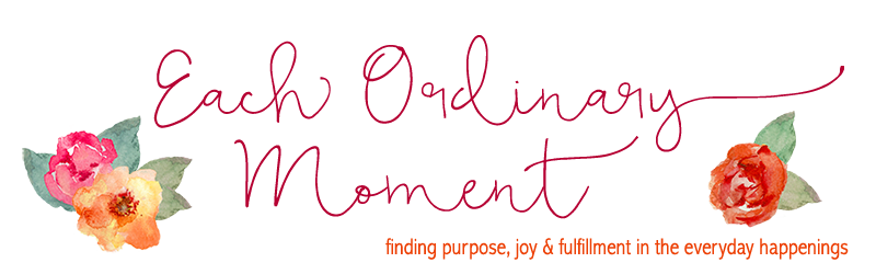 Each Ordinary Moment - Finding Purpose, Joy and Fulfillment in the Everyday Happenings