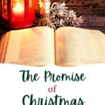 Bible and Christmas Decorations