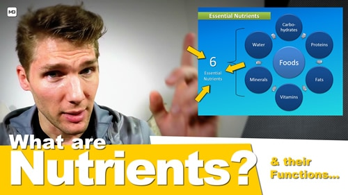 Nutrients And Their Functions - You Are What You Eat Crash Course #1