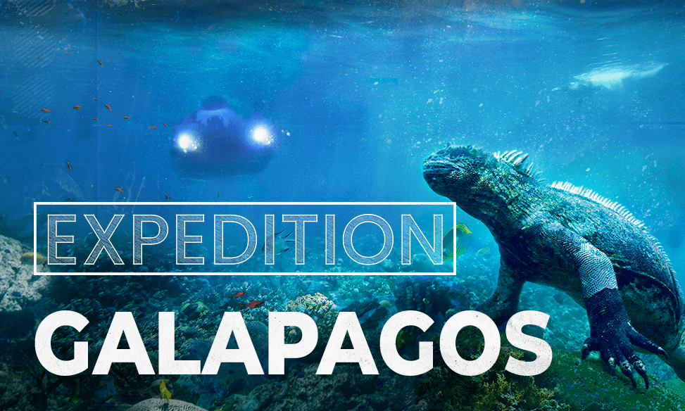 Expedition Galapagos: 3D 360 Experience