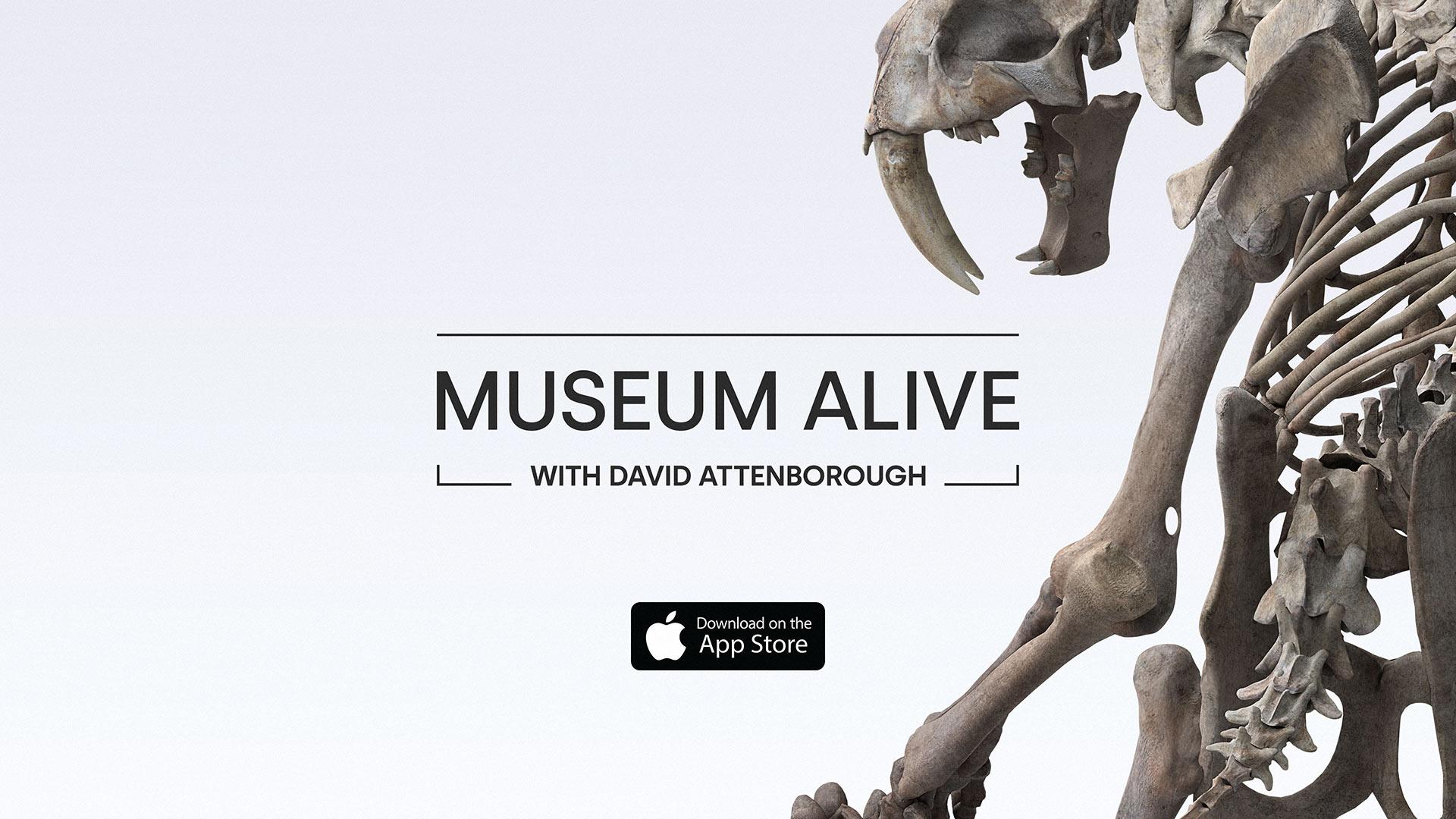 Museum Alive AR With David Attenborough