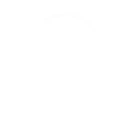 planecircle