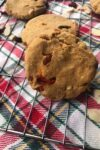 orange-hazelnut cranberry cookies