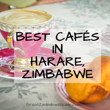 Harare coffee shops and cafes: outdoor dining at its best