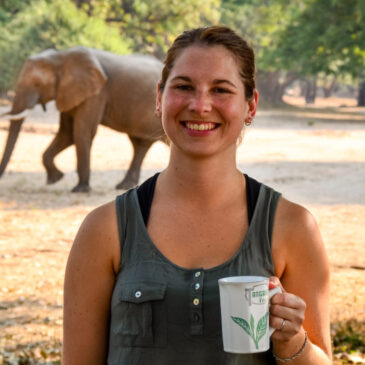 Travelettes: Camping with elephants in Zimbabwe