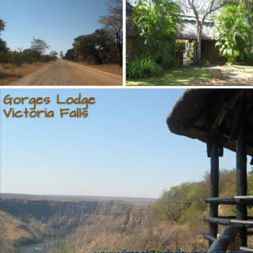 The roadtrip that roared: #8 Town and Gorge
