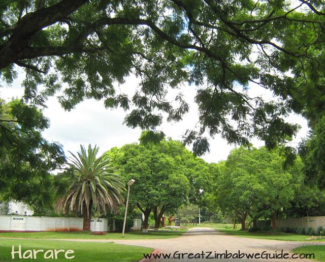 Harare street