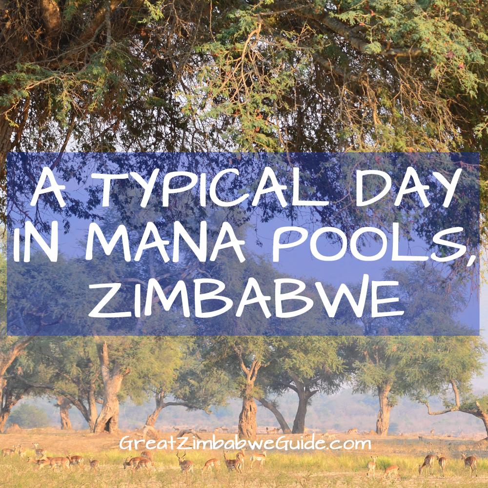 Mana Pools Zimbabwe Africa