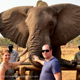 ild Horizons elephant safari-2