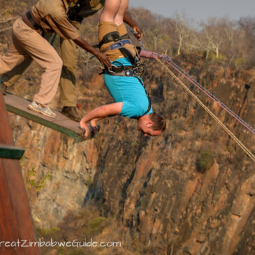 Our Victoria Falls gorge swing and adventure slide
