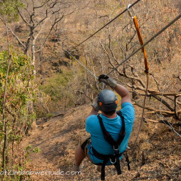 Our Victoria Falls canopy tour