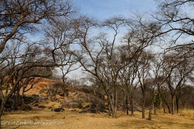 Khami Ruins Bulawayo Zimbabwe-1-10