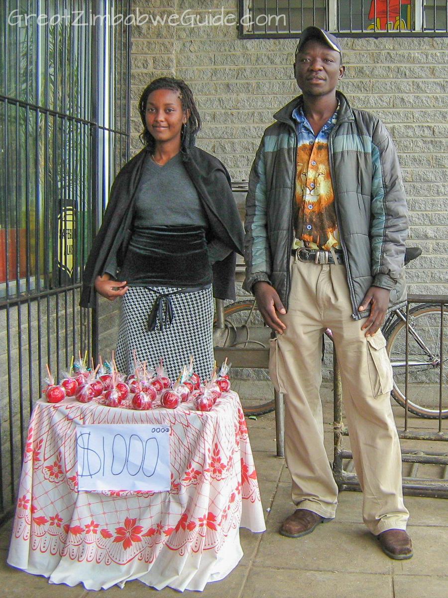 Great Zimbabwe Guide 2008 Bulawayo Market Hyperinflation