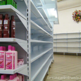 Great Zimbabwe Guide 2008 Supermarket Shelves