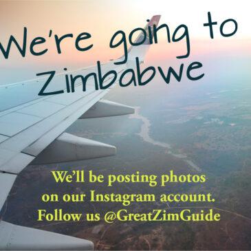 Don't miss Zimbabwe travel updates!