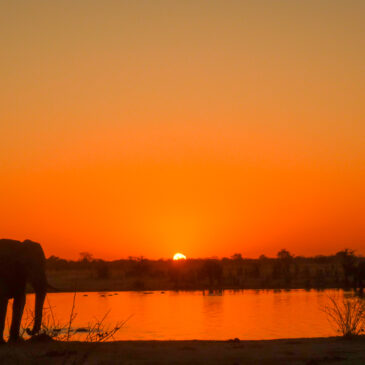 Zimbabwe self-drive travel journal: Part 1: Hwange National Park