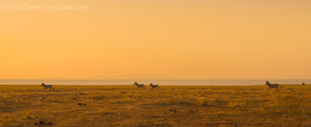 Matusadona National Park Kariba Zimbabwe Wildlife Sunset