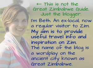 About Zimbabwe Blogger 2017