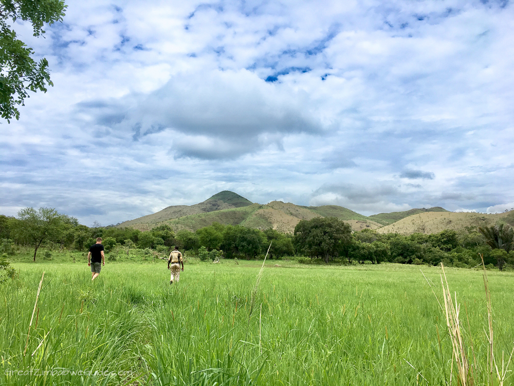 Zimbabwe Mavhuradona Wilderness Area Kopje Tops-1-7