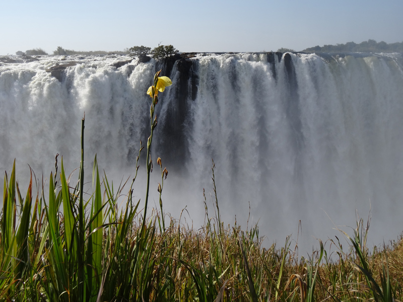 ABS Victoria Falls Zimbabwe Great