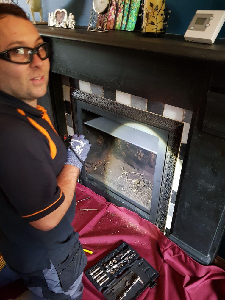 1st job birds nest discovery 2