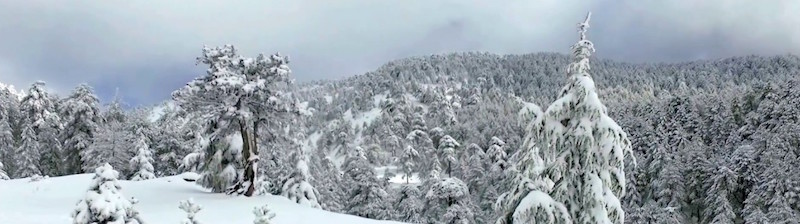 Troodos Mountains covered in snow