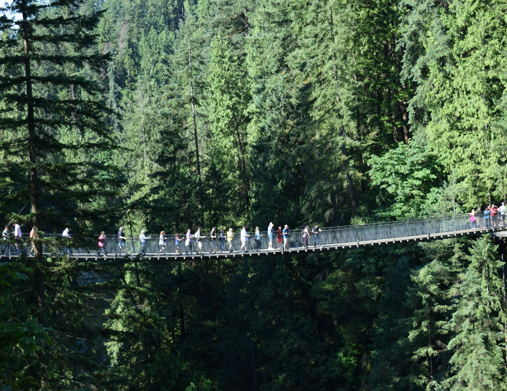 View of Capilano Suspension Bridge