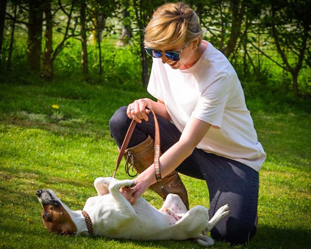 Animal and Equine Assisted Therapy