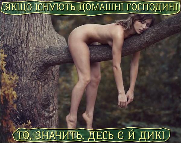 Логічно. Якщо існують домашні господині, то, значить, десь є й дикі. Гола дівчина в лісі спить на дереві на гілці