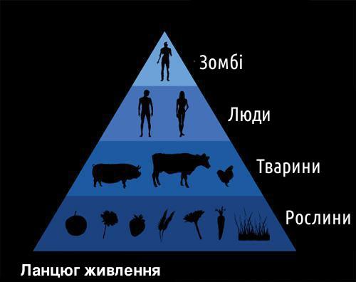 Трохи біології