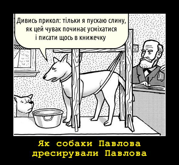 Як собаки Павлова дресирували Павлова. - Дивись прикол: тільки я пускаю слину, як цей чувак починає усміхатися і писати щось в книжечку