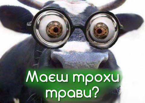 Маєш трохи трави?!