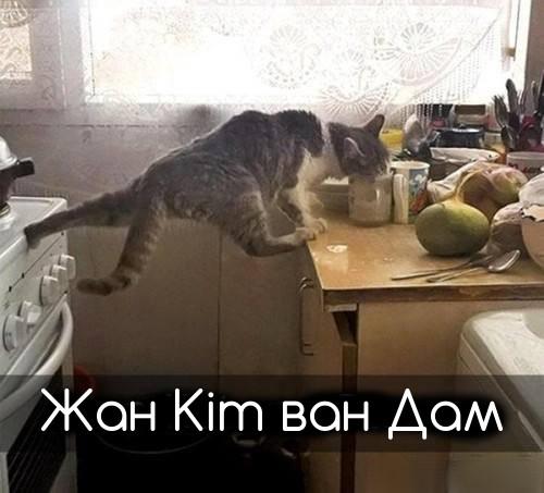 Жан Кіт ван Дам