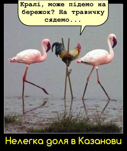 Нелегка доля в Казанови