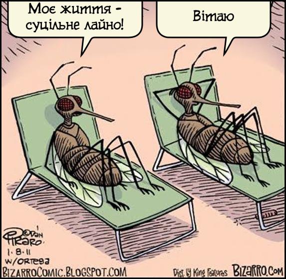 Мухи. - Моє життя - суцільне лайно! - Вітаю. Карикатура про мух.