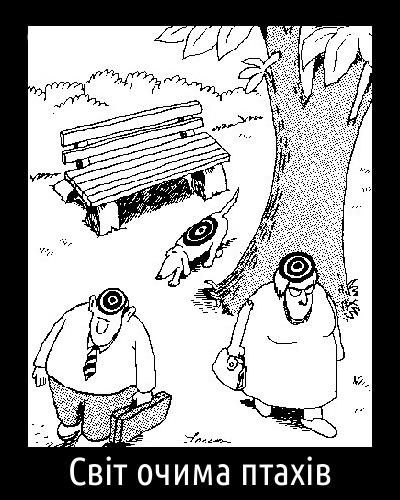 Світ очима птахів