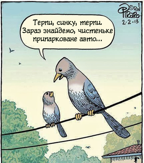 Голуб і голубенятко